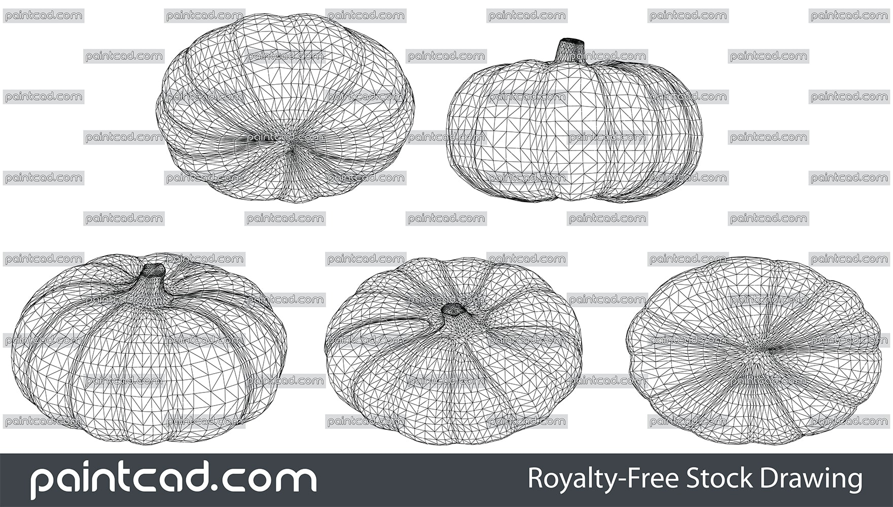 Wireframe design of pumpkin with handle over white background - vector illustration